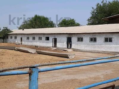 Коне ферма за 420 млн 〒 в Каскелене