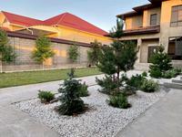 8-комнатный дом, 330 м², 8 сот., мкр Нуртас за 92 млн 〒 в Шымкенте, Каратауский р-н