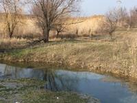 Фермерское хозяйство за 200 млн 〒 в Шымкенте