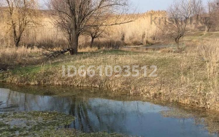 Фермерское хозяйство за 270 млн 〒 в Шымкенте