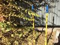6-комнатный дом, 280 м², 9 сот., Сарын за 78 млн 〒 в Нур-Султане (Астана), Алматы р-н — фото 32