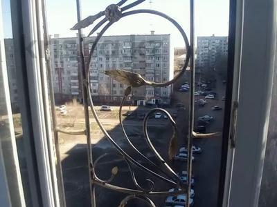 3-комнатная квартира, 68.3 м², 9/9 этаж, Ауэзова (8 мкр.) 83 — Беркимбаева за 8.6 млн 〒 в Экибастузе — фото 22
