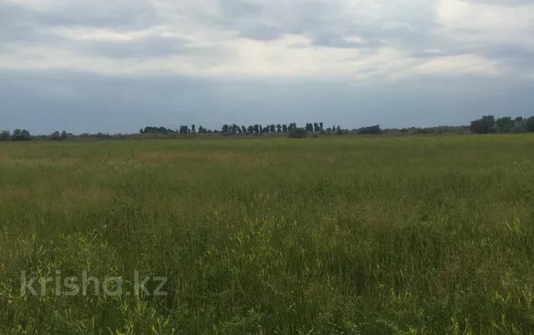Участок 445 соток, Алматинская обл. за ~ 26.5 млн 〒