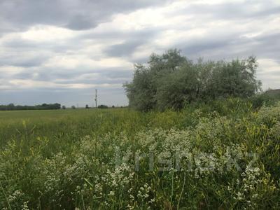 Участок 445 соток, Алматинская обл. за ~ 26.5 млн 〒 — фото 10