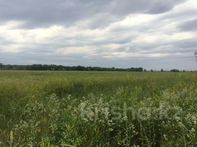 Участок 445 соток, Алматинская обл. за ~ 26.5 млн 〒 — фото 11