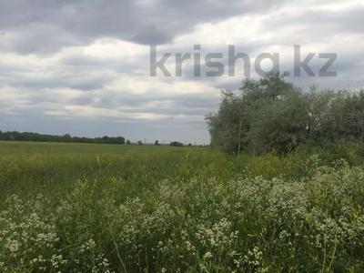 Участок 445 соток, Алматинская обл. за ~ 26.5 млн 〒 — фото 13