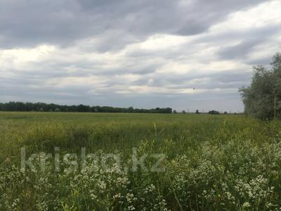 Участок 445 соток, Алматинская обл. за ~ 26.5 млн 〒 — фото 14