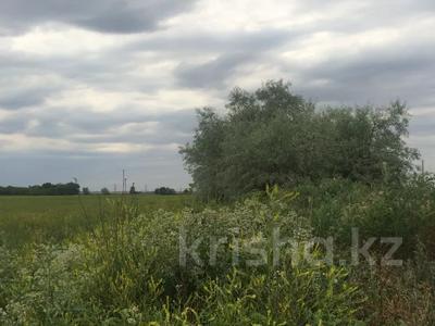 Участок 445 соток, Алматинская обл. за ~ 26.5 млн 〒 — фото 18