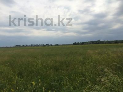 Участок 445 соток, Алматинская обл. за ~ 26.5 млн 〒 — фото 2