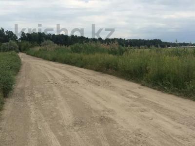 Участок 445 соток, Алматинская обл. за ~ 26.5 млн 〒 — фото 20