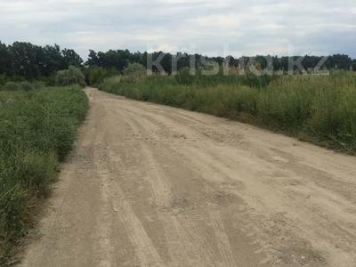 Участок 445 соток, Алматинская обл. за ~ 26.5 млн 〒 — фото 21
