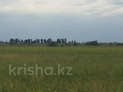 Участок 445 соток, Алматинская обл. за ~ 26.5 млн 〒 — фото 3