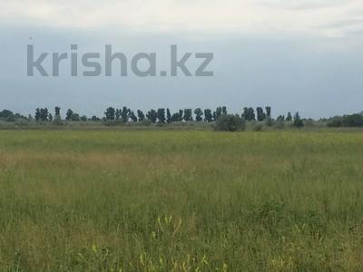 Участок 445 соток, Алматинская обл. за ~ 26.5 млн 〒 — фото 4
