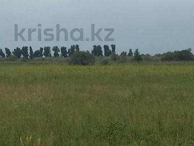 Участок 445 соток, Алматинская обл. за ~ 26.5 млн 〒 — фото 5