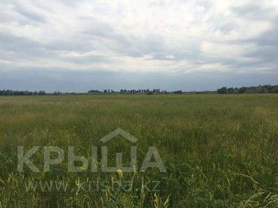 Участок 445 соток, Алматинская обл. за ~ 26.5 млн 〒 — фото 7