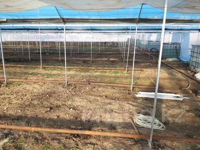 Склад продовольственный 61.2 га, Желтоксан — Аль-Фараби за 30 млн 〒 в Унгуртасе — фото 6