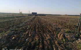 Яблоневый сад 8 га за 59 млн 〒 в Есик