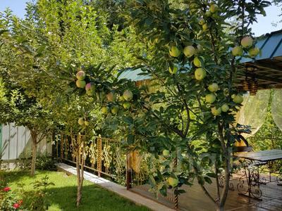 5-комнатный дом, 131 м², 5 сот., Шелихова за 54.5 млн 〒 в Алматы, Жетысуский р-н — фото 8
