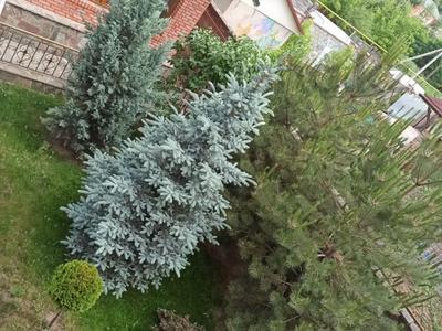 8-комнатный дом, 350 м², 12 сот., Чимбулак 16 за 122 млн 〒 в Талгаре