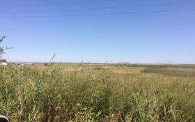 Плодоносящие земли за 2 млрд 〒 в Косозен