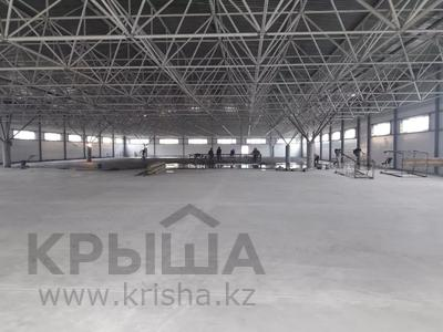 Здание, площадью 900 м², Терешковой за 12 млн 〒 в Семее — фото 23