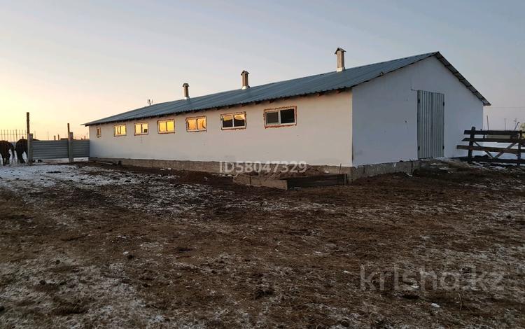 Животноводческая ферма. Фазенда за 14 млн 〒 в Аршалы