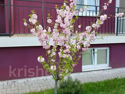 1-комнатная квартира, 37 м², 4/9 этаж посуточно, Шатурская 7 за 9 000 〒 в Калининграде