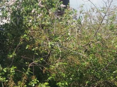 Дача с участком в 6 сот., Восточный за 1.1 млн 〒 в Семее — фото 4