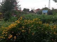3-комнатный дом, 70 м², 8 сот., Нурбаева 154 — Байсалыкова за 13 млн 〒 в Семее