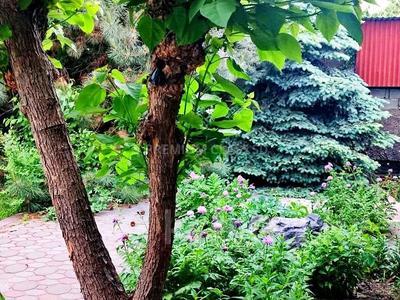 6-комнатный дом, 450 м², 12 сот., мкр Мамыр-4, Бауыржана Момышулы — Абая за 110 млн 〒 в Алматы, Ауэзовский р-н — фото 8