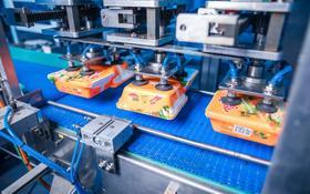 Завод по производству лапши быстрого приготовления и макаронных изделий . за 546 млн 〒 в Рудном