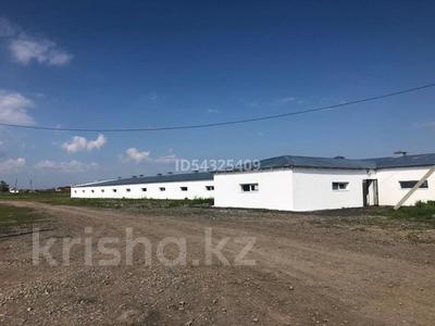 Молочно товарная ферма за 832 млн 〒 в Караганде — фото 11