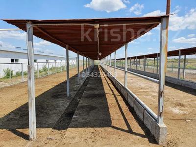 Молочно товарная ферма за 832 млн 〒 в Караганде — фото 2