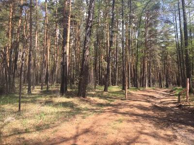 туристическая база за 42 млн 〒 в Щучинске — фото 20