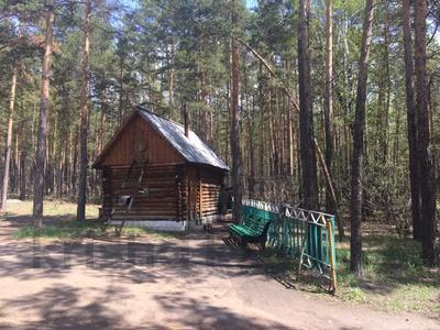 туристическая база за 42 млн 〒 в Щучинске — фото 7