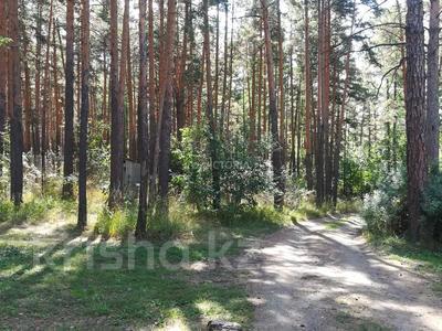 туристическая база за 42 млн 〒 в Щучинске — фото 50