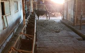 Фазенда/Сельское Хоз. ТОРГ УМЕСТЕН за 28 млн 〒 в Таразе