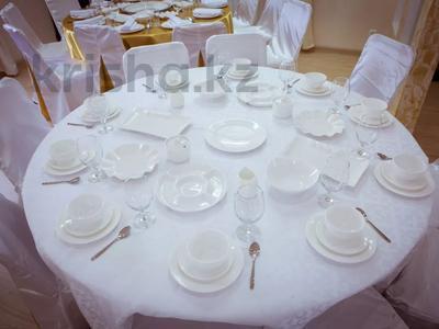 8-комнатный дом посуточно, 700 м², Силеты 11 — Бурабай за 200 000 〒 в Нур-Султане (Астана), Алматы р-н — фото 25