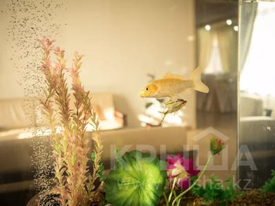 8-комнатный дом посуточно, 700 м², Силеты 11 — Бурабай за 200 000 〒 в Нур-Султане (Астана), Алматы р-н — фото 33