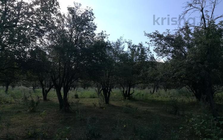 Участок 1.8 га, Пк.им.Рыскулова, вблизи СОК Акбулак за 25 млн 〒 в Талгаре