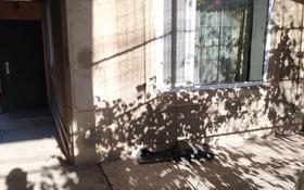 2-комнатный дом помесячно, 45 м², 15 сот., мкр Кольсай, Омырзак султангазы 2 за 75 000 〒 в Алматы, Медеуский р-н