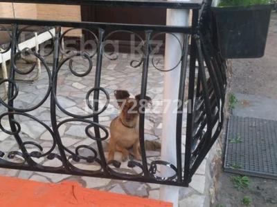 4-комнатный дом, 92 м², 6 сот., Совхозная 3 за 10 млн 〒 в Темиртау — фото 2