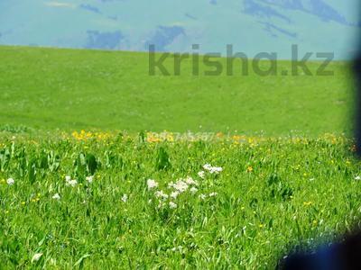 Эко-туризм, ферма, база для животноводства за 800 млн 〒 в Кегене — фото 9
