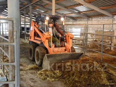 Эко-туризм, ферма, база для животноводства за 800 млн 〒 в Кегене — фото 11