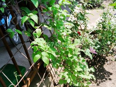 Дача с участком в 12 сот., 3-я улица 41 за 12.5 млн 〒 в Талгаре — фото 23
