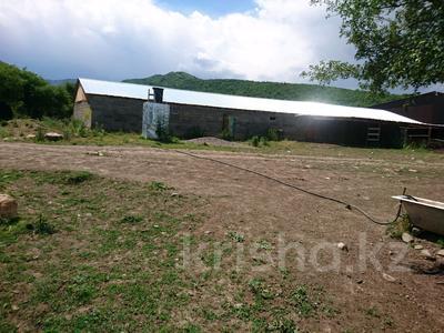 Фазенда молочная ферма,откормочная база за 22 млн 〒 в Есик — фото 2