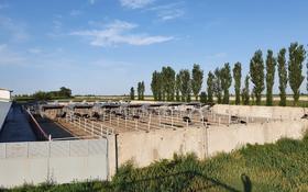 Страусиная и индюшиная ферма за 450 млн 〒 в Теренкаре