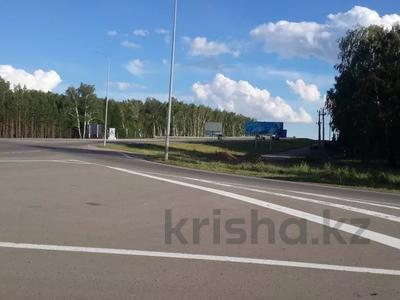 Здание, площадью 1100 м², Центральная за 20 млн 〒 в Щучинске — фото 18
