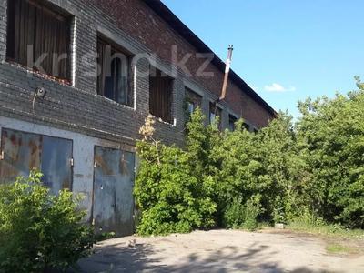 Здание, площадью 1100 м², Центральная за 20 млн 〒 в Щучинске — фото 3