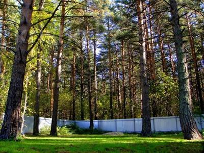 3-комнатный дом, 65 м², 23 сот., Село Кубовая ул. Зелёная 8 за 27 млн 〒 в Новосибирске